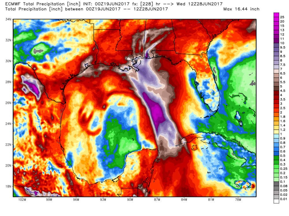 Latest rainfall forecast from the EURO model. Note, the highest rain totals will be north and east of the center.