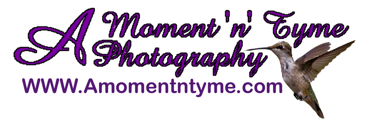 A Moment 'n' Tyme Photography