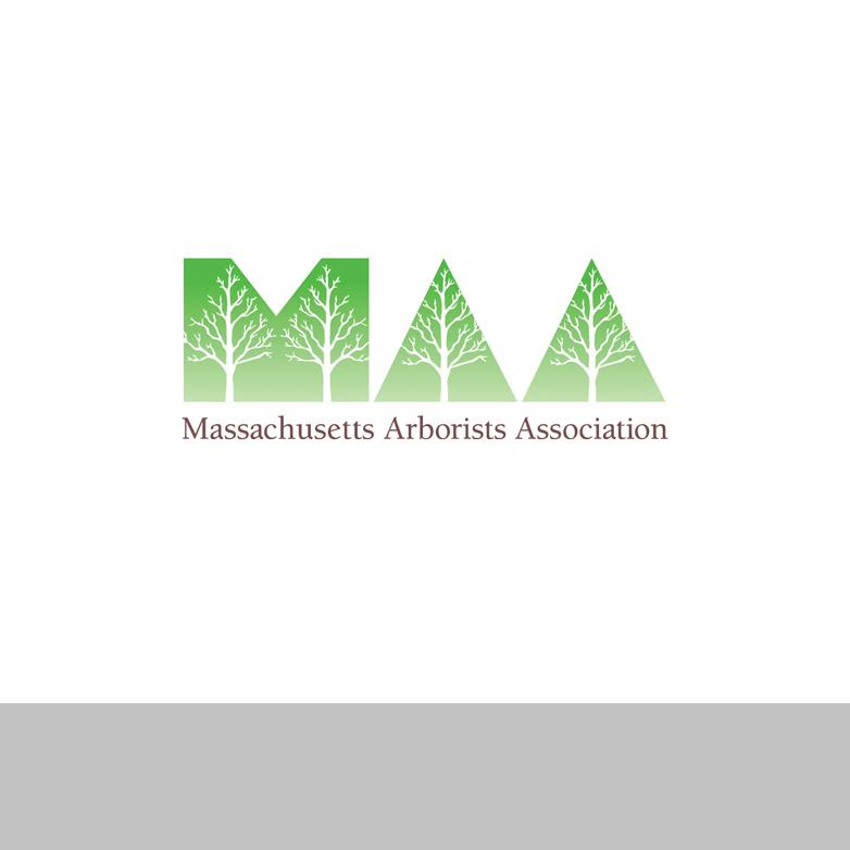 logo_N maa.jpg