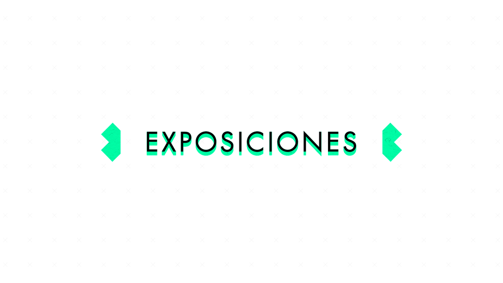 LCE-Programa-Portfolio-Exposiciones.png