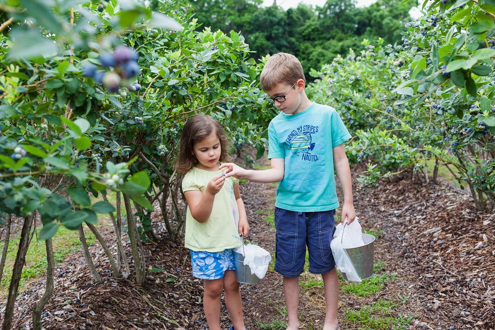 Jacksonville Child Family Photography0093.jpg