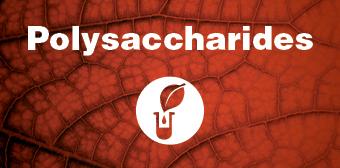 icon_Polysaccharides.jpg