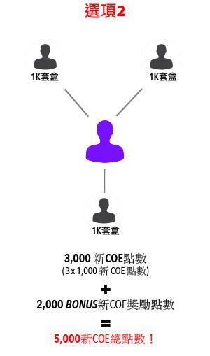 Option2-graph-c.jpg