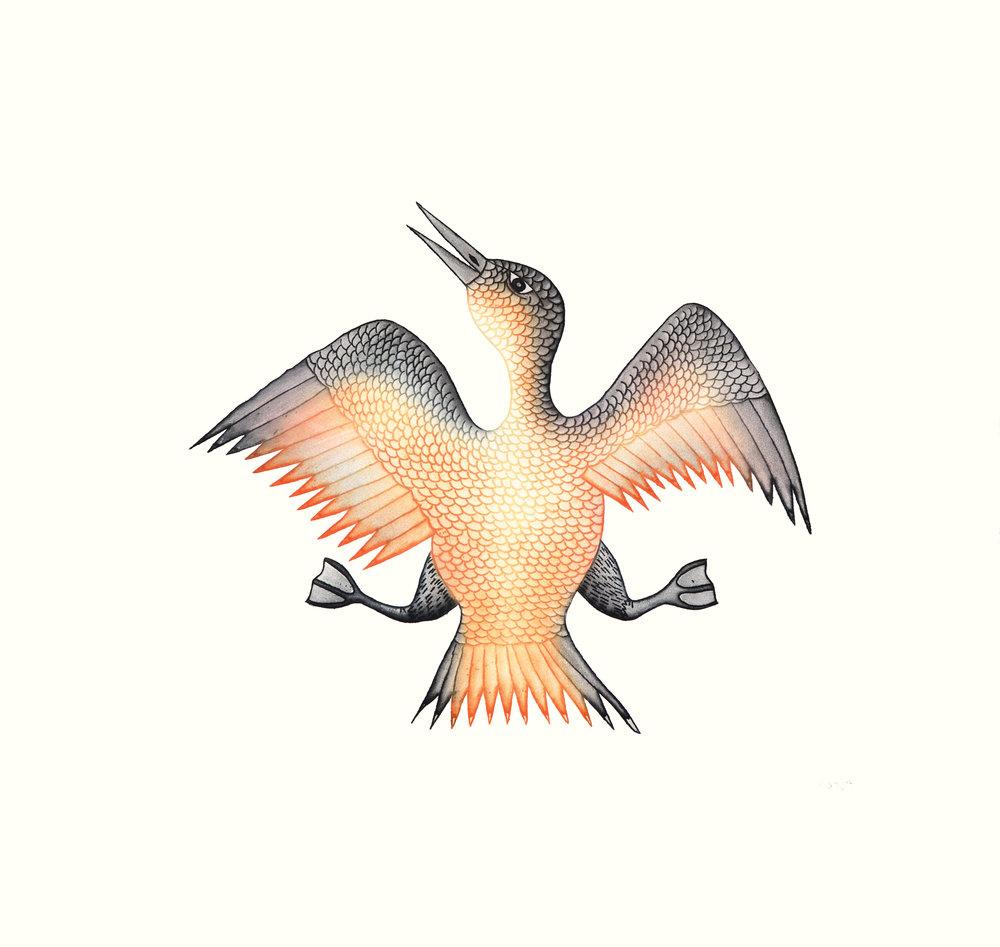Cee Pootoogook, Jubliant Bird