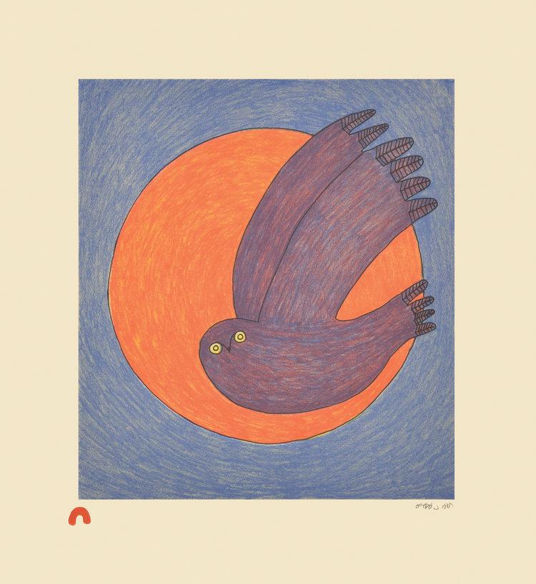 Ningiukulu Teevee, Nocturnal Owl