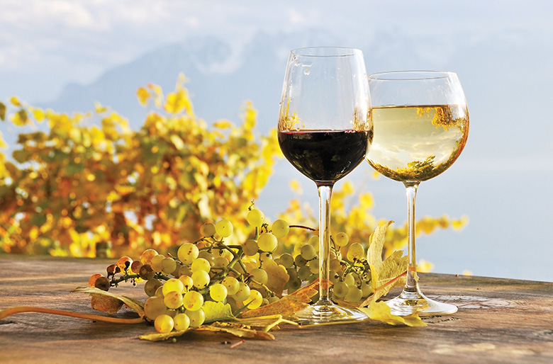 """Autumn brings """"leafy"""" reds such as Tempranillo and honeyed-apple Chenin Blanc"""