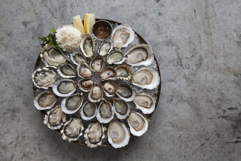 Taylor-Shellfish-Oysters.jpg