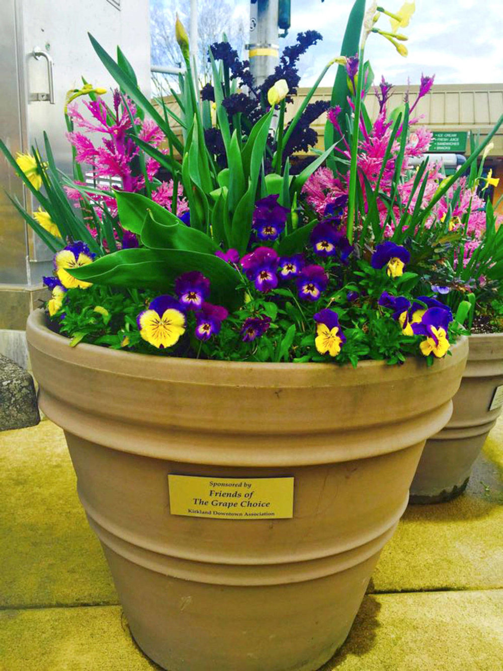 A self-watering flower pot in Downtown Kirkland. Courtesy photo