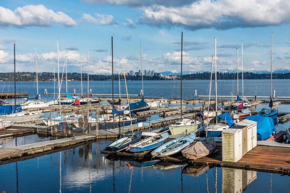 Leschi's Lake Washington marina, with eyes on Bellevue.  IMAGE: GEORGE COLE