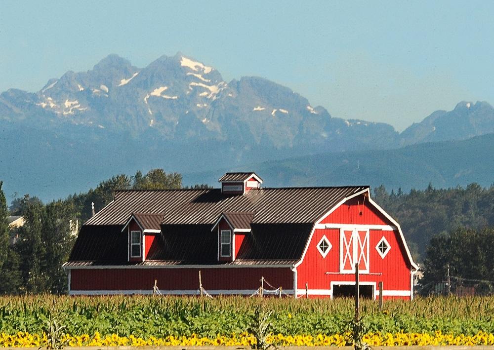 Stocker Farms.