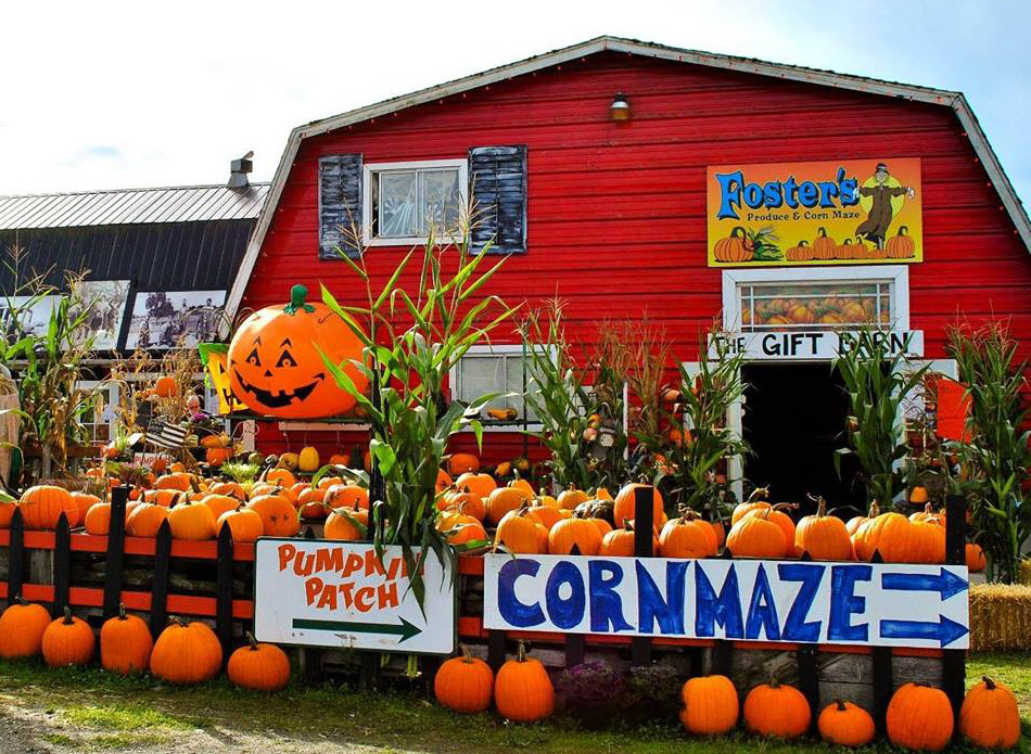 Foster's Produce and Corn Maze. Photo credit: Foster's website