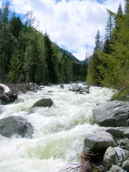 ngalls Creek  IMAGE:  CRAIG ROMANO