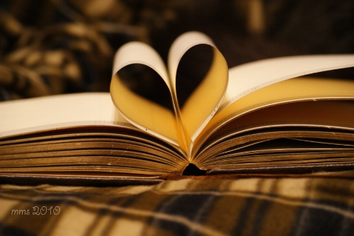 Love-is-in-the-books-reading-17323245-900-602.jpg