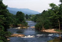 VermontLandscape_RiverII25 copy.jpg