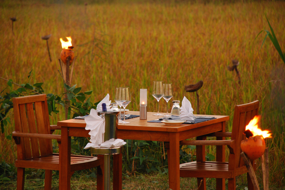 Dining Amidst The Paddy.JPG