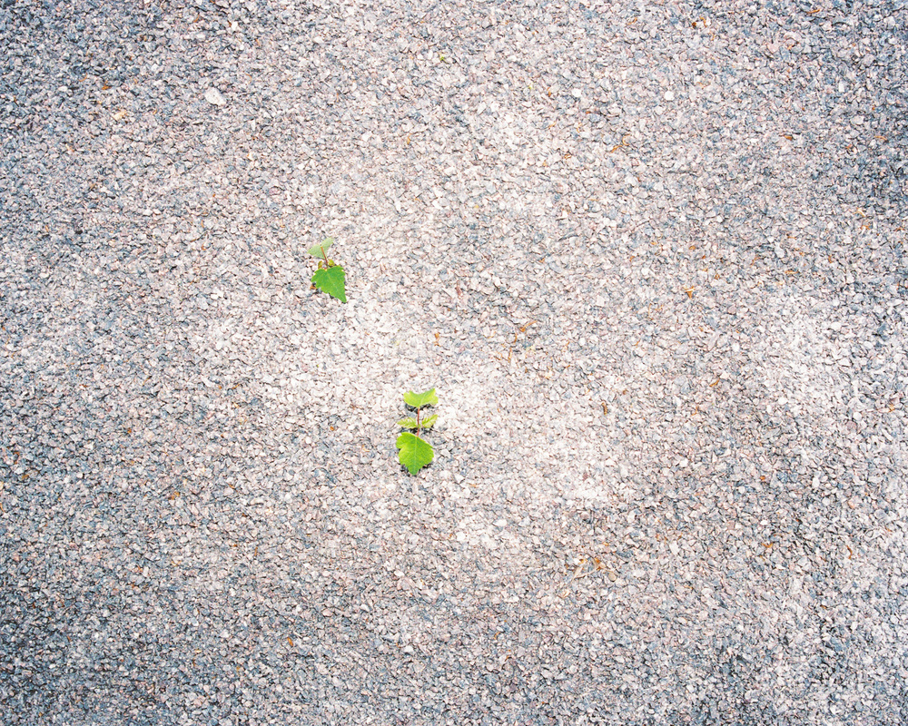 Spring Berlin Mitte