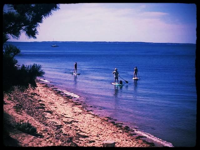 paddle spot - 1.jpg