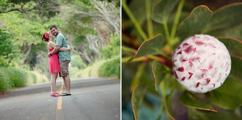 Maui_engagement037.jpg