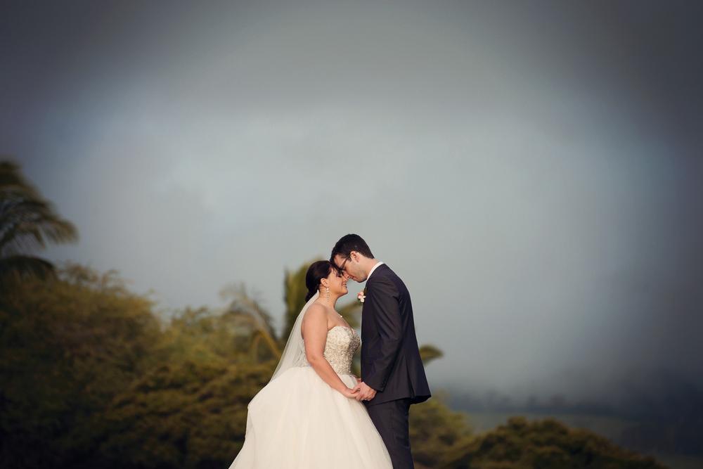 Waliea_Maui_Destination_Wedding022.jpg