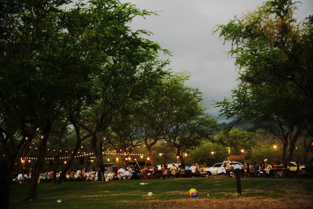DIY_Maui_Wedding_Hawaii060.jpg