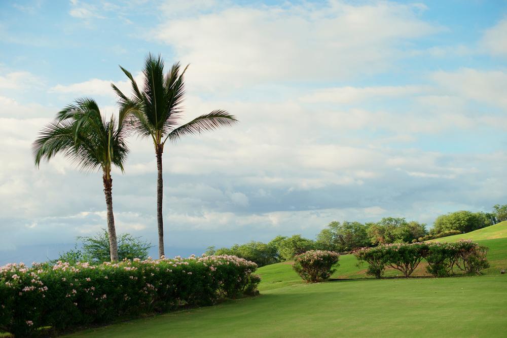 Maui_Wedding_photography_gannons014.jpg