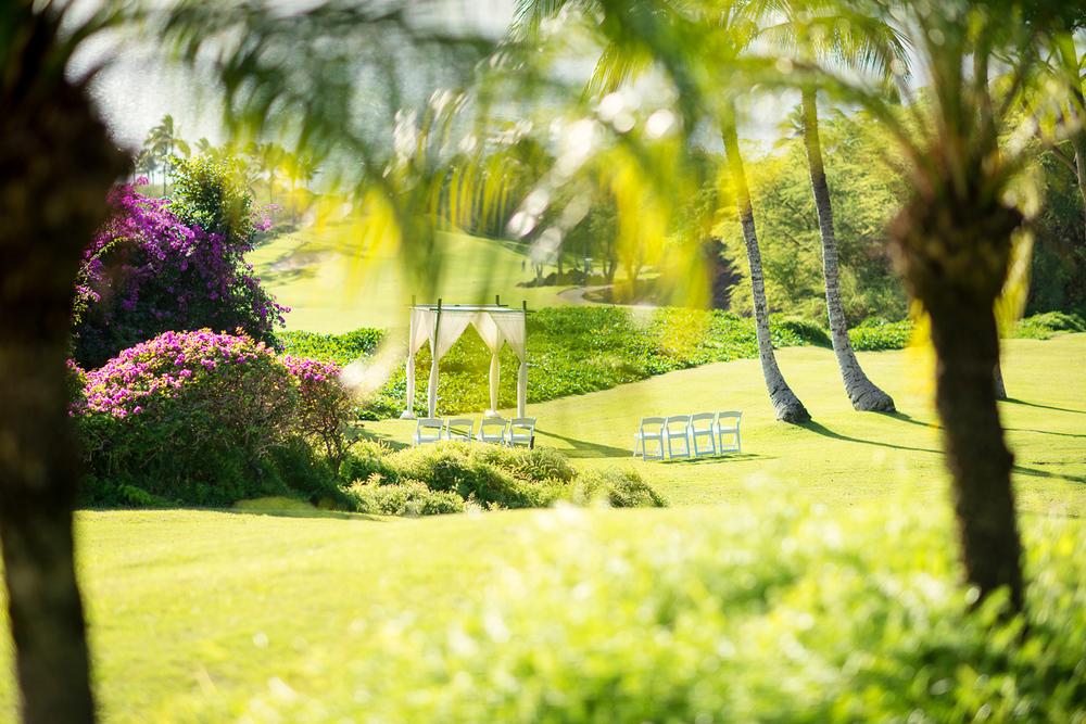 Hawaii_Wedding_Photography001.jpg