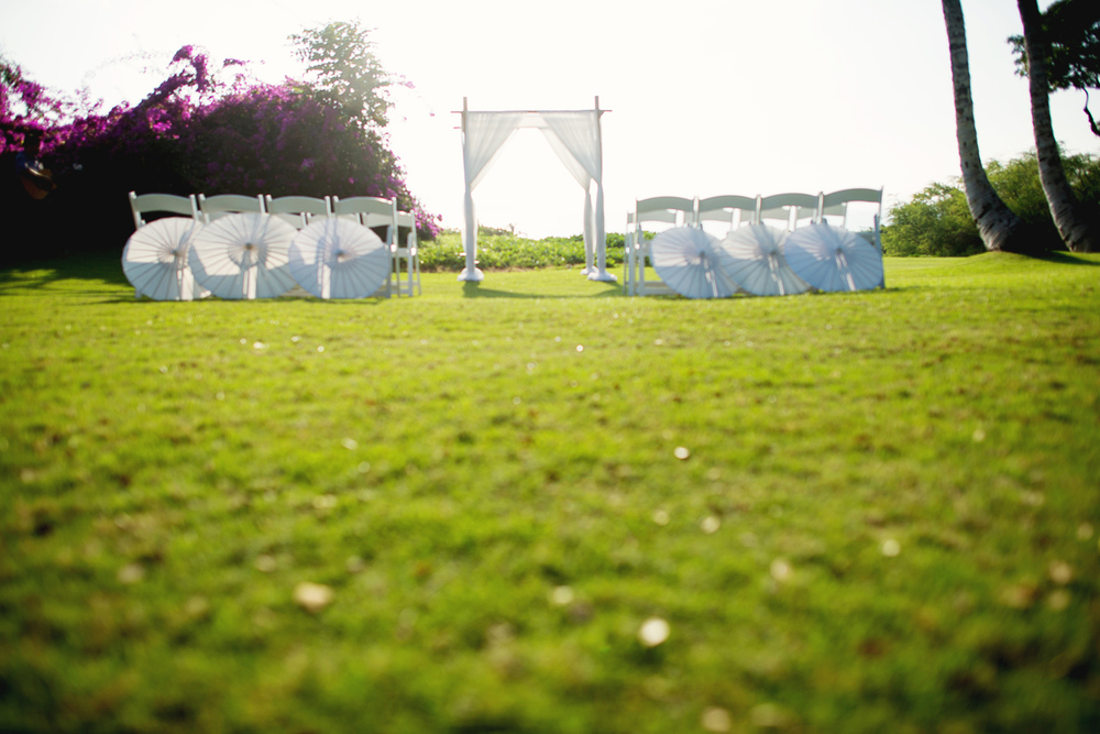 Beautiful Setup Wedding