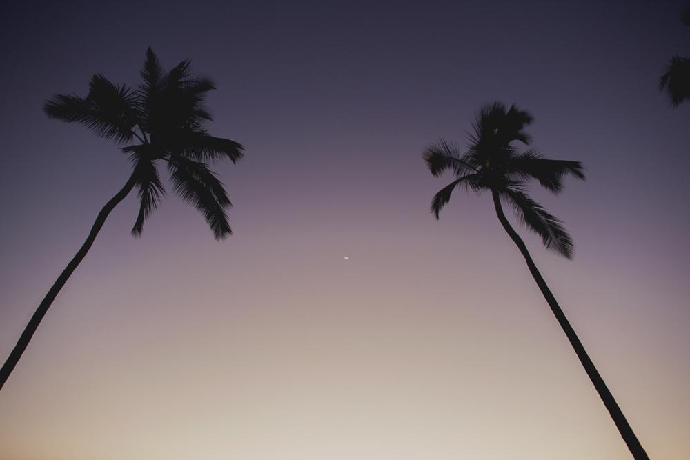 Maui_Destination_Wedding055.jpg