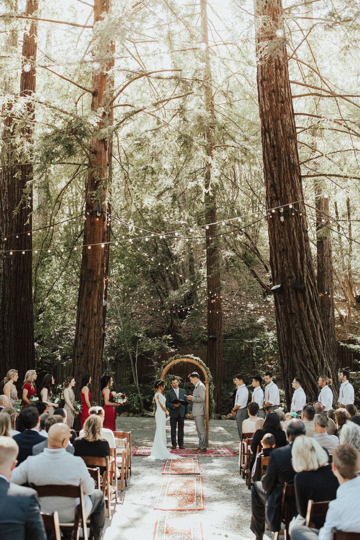 Whitney + John's California Redwoods Wedding