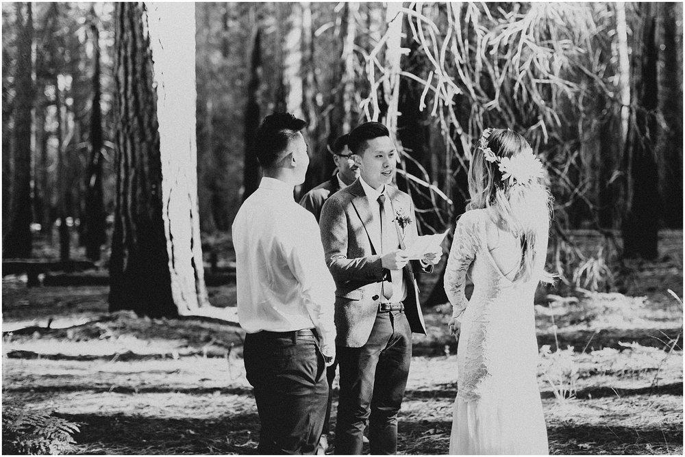 Yosemite_elopement_0042.jpg