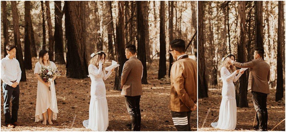 Yosemite_elopement_0046.jpg