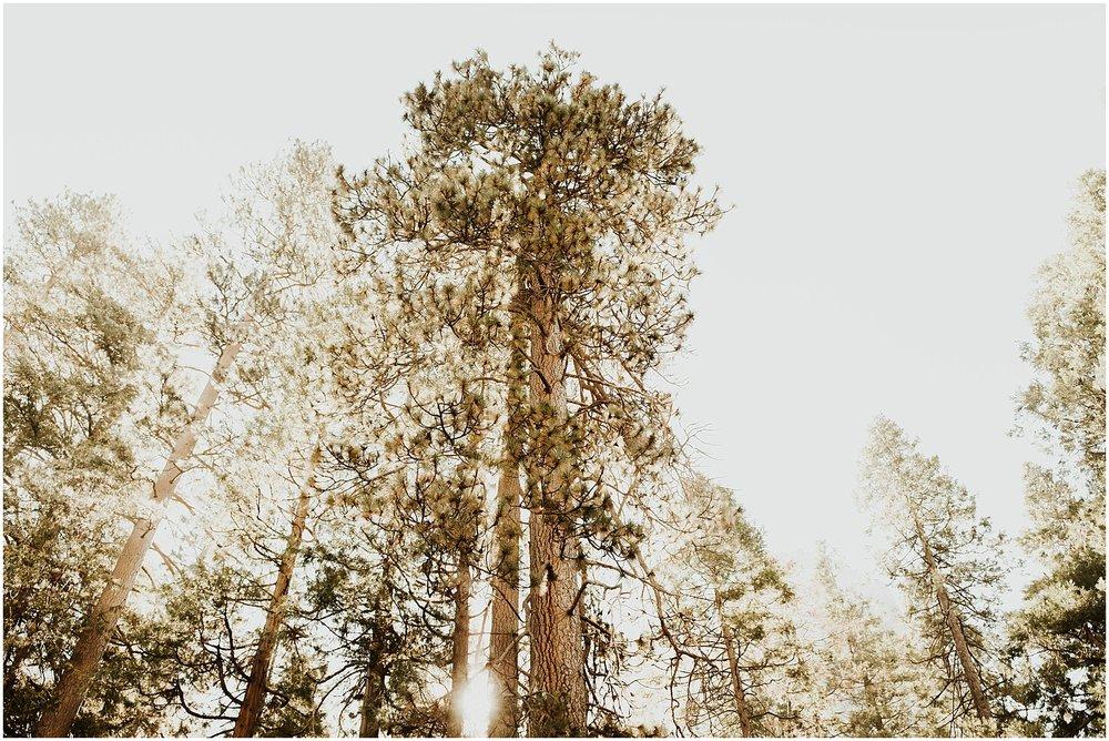 Yosemite_elopement_0067.jpg