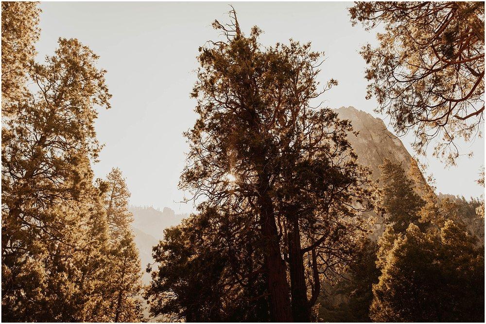 Yosemite_elopement_0072.jpg
