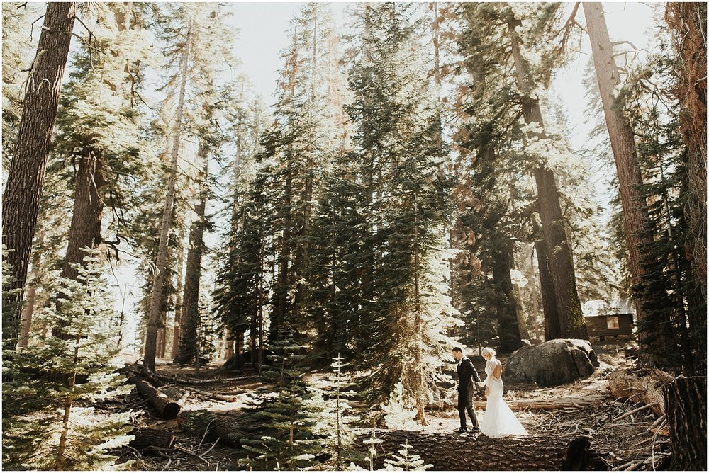 yosemiteelopement_0037.jpg