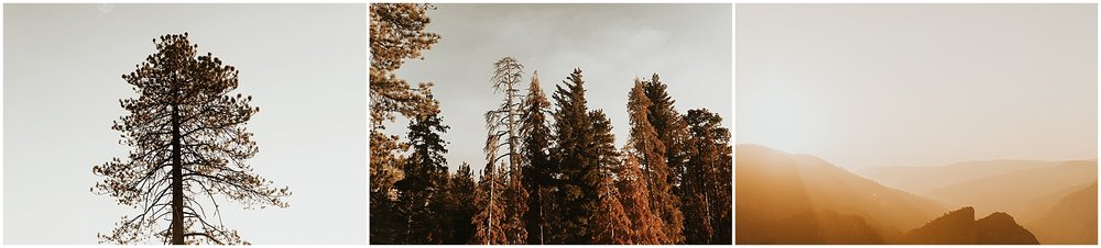 yosemiteelopement_0110.jpg