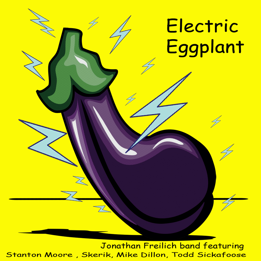 Electric Eggplant Cover.JPG