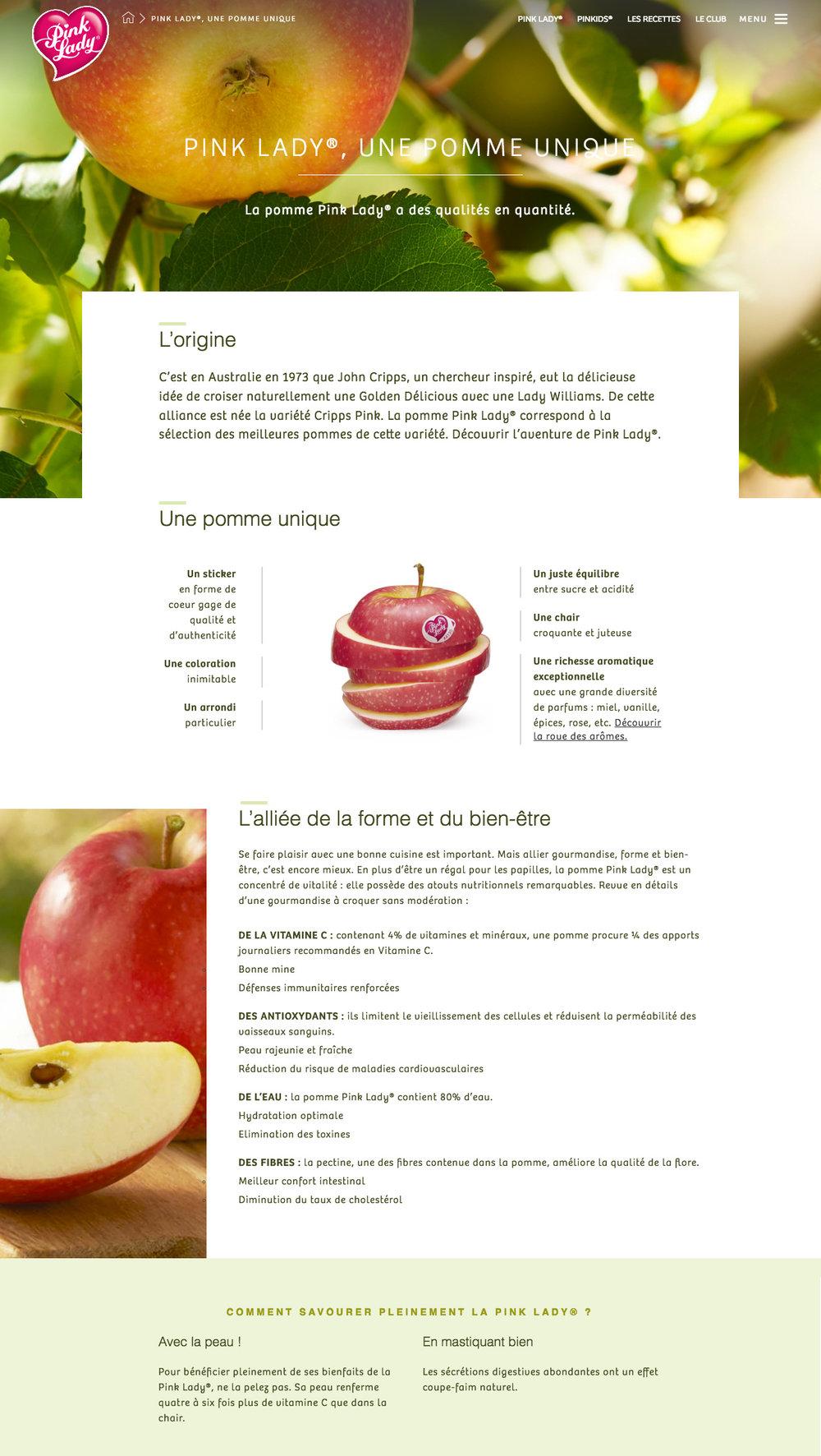 PL_website_1.jpg