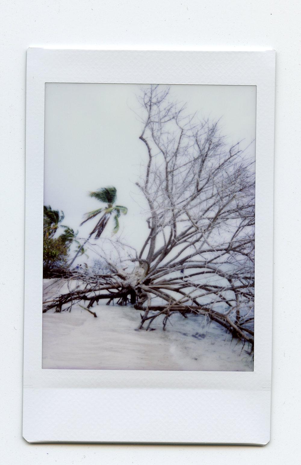 Isla Palomino, Fajardo, Puerto Rico