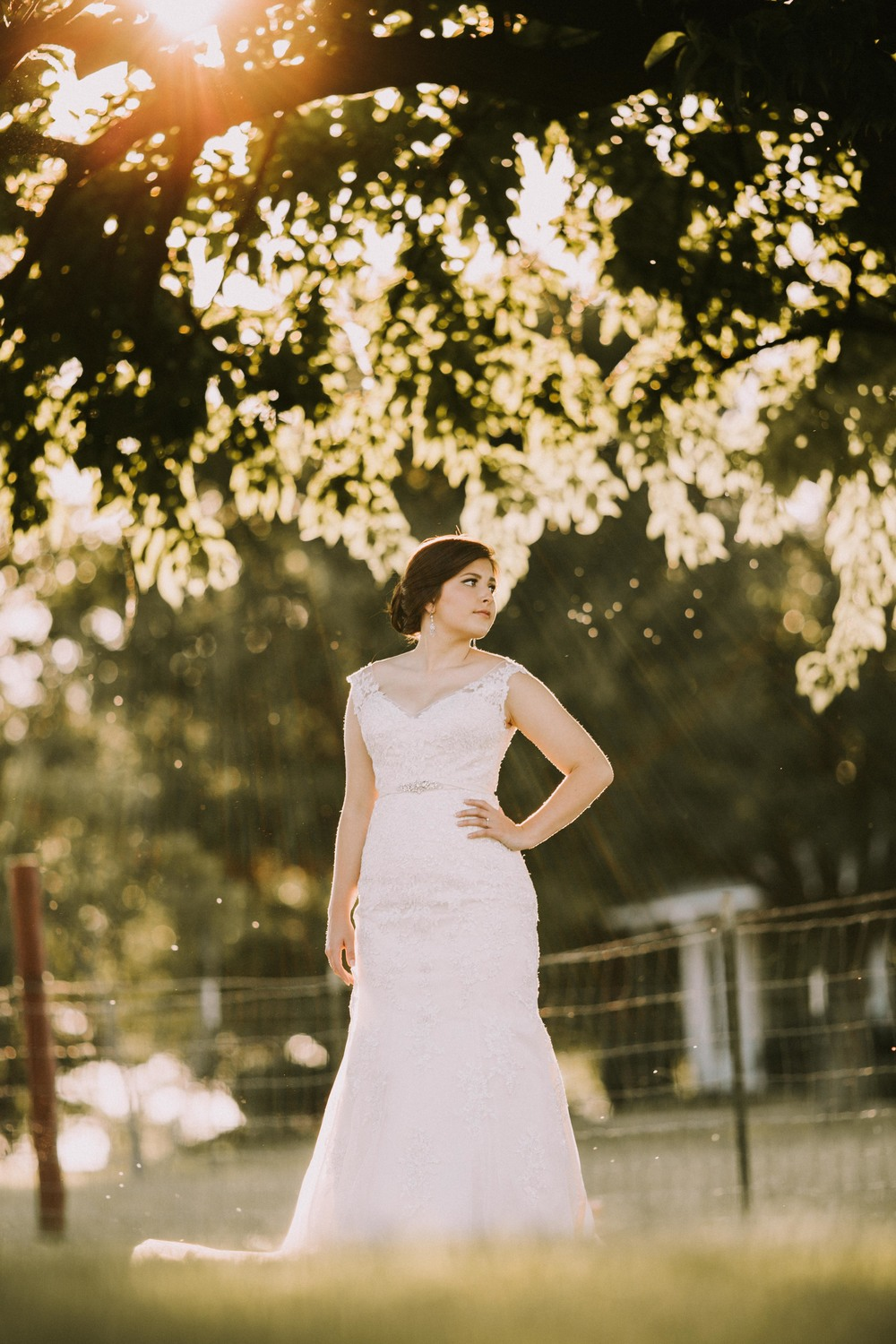 Backlit Bridal Sunset