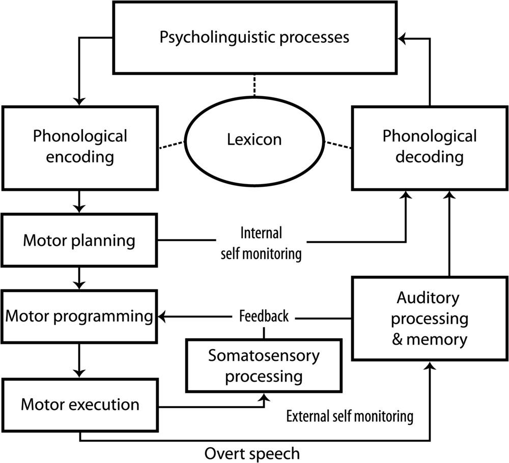 Nijland, L., Terband, H., & Maassen, B. (2015). Cognitive Functions in Childhood Apraxia of Speech.J Speech Lang Hear Res, 58(3), 550-565. doi: 10.1044/2015_JSLHR-S-14-0084.