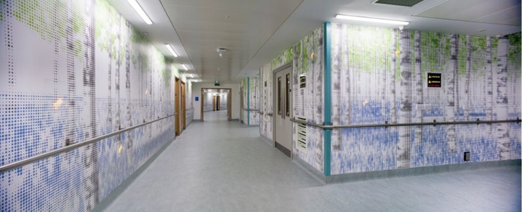Health Happiness And The Hospital Hallway An Interactive