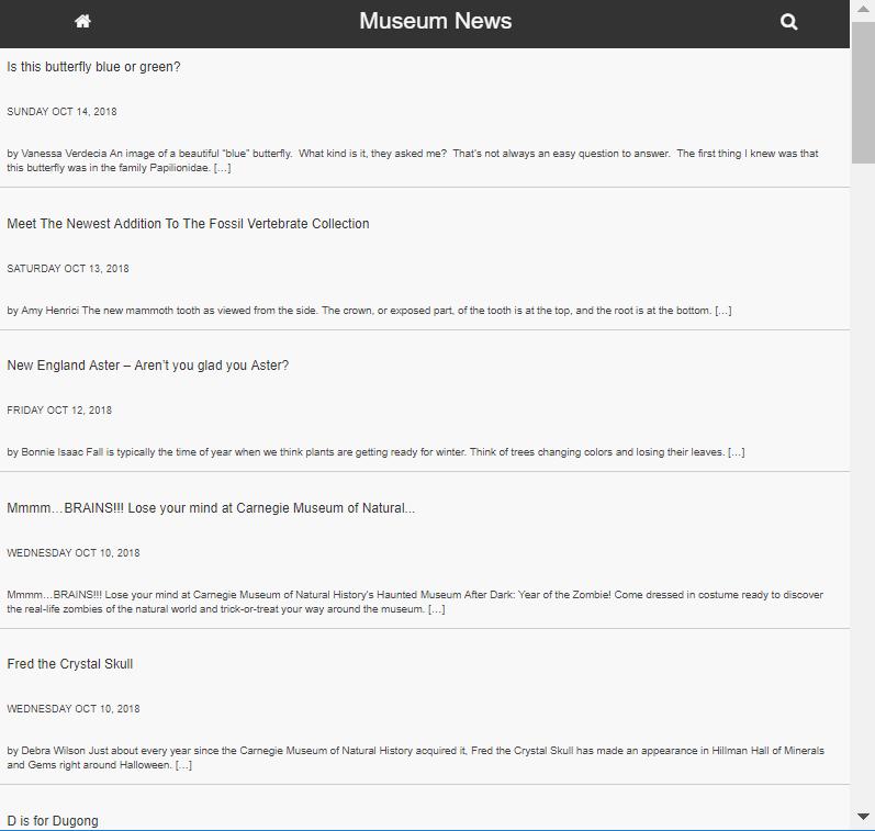 Screenshot of Museum News portal