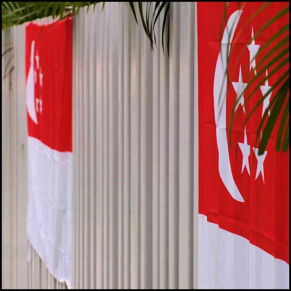 Flags SG 1.jpg