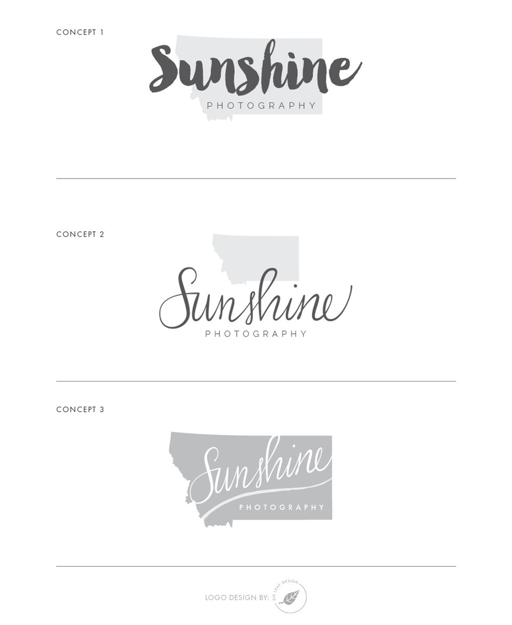 Logo Concepts for Sunshine Photography with Hand-Lettering Script and Montana