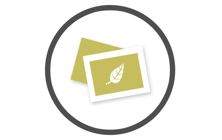 Logo Design | Six Leaf Graphic Design | Freelance Graphic Designer | Denver, Colorado
