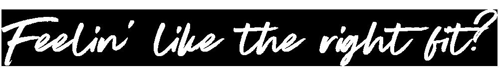 Feelin' like the right fit? Web Design In A Day | Six Leaf Design | Freelance Graphic + Logo + Brand + Web Designer | Denver, Colorado