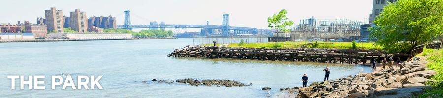 Image from Brooklyn Bridge Park Website