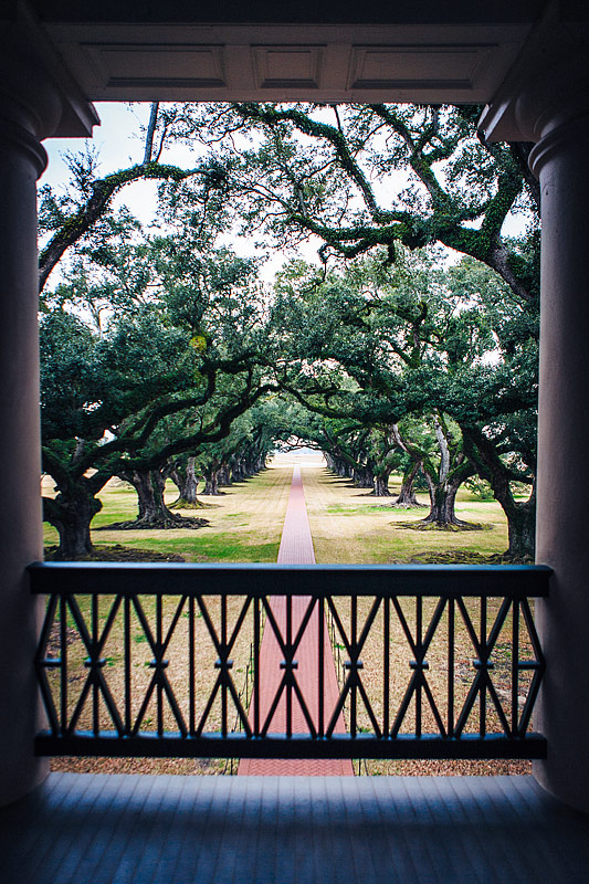 View from Oak Alley Plantation