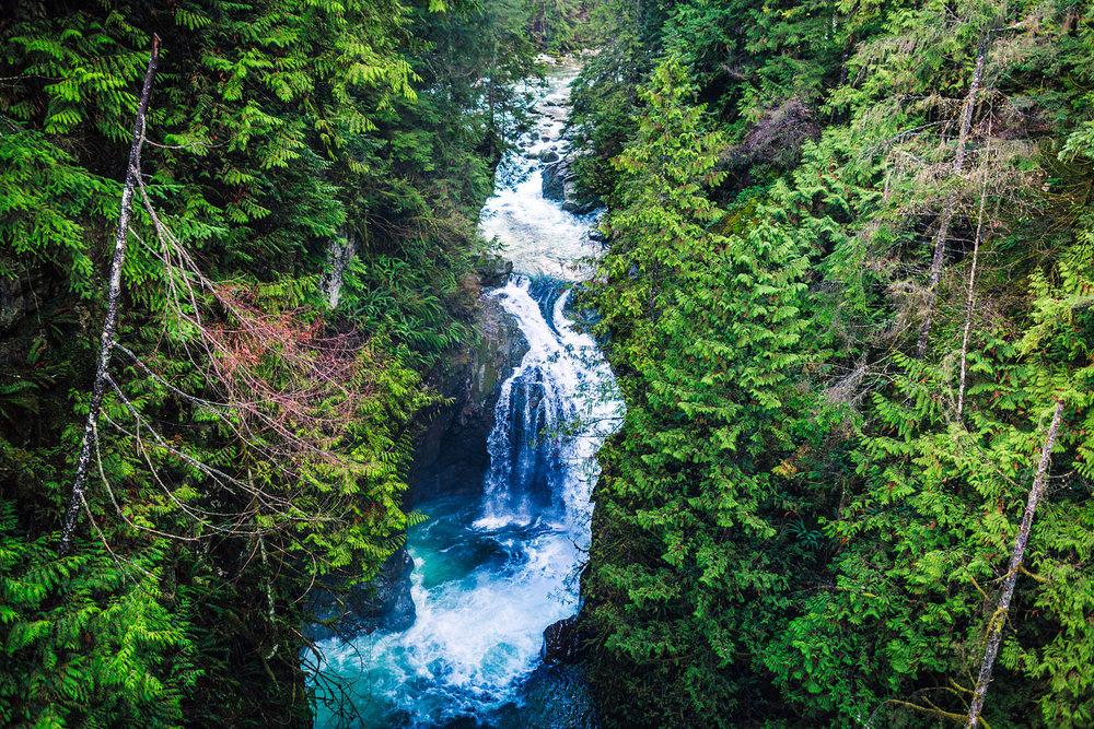 Lynn Canyon Park, Vancouver BC