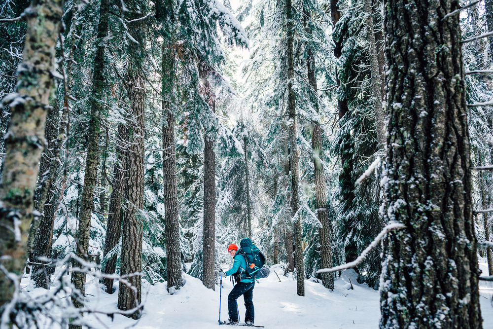 Walking through the snowy forest near Diamond Lake, Oregon